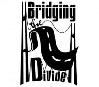 Bridging Divide